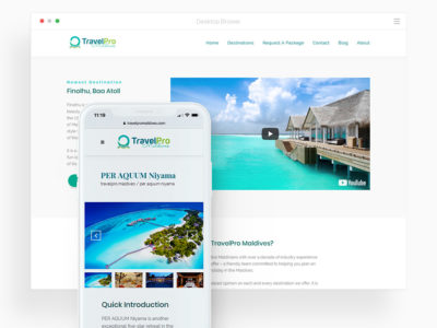TravelPro Branding & Website